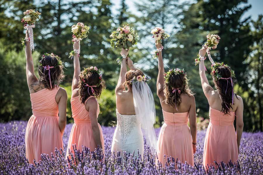 Photographe-de-mariage-lavandes